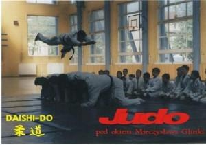 pokazy judo